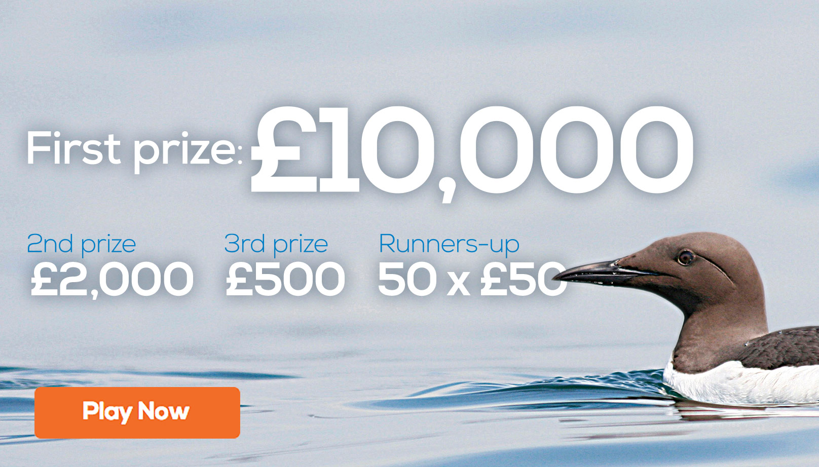 First prize: £10,000. Second prize: £2,000. Third prize: £500. Plus 50 runners up prizes of £50
